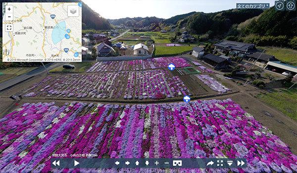 常陸大宮市 小舟の芝桜のVRツアー写真