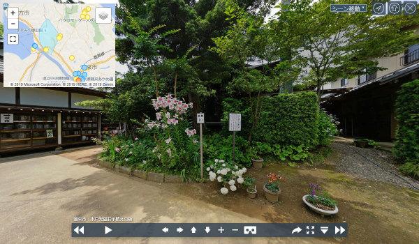 潮来市おすすめスポット水戸光圀お手植えの槇の案内