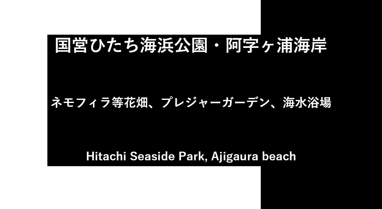 国営ひたち海浜公園・阿字ヶ浦海岸