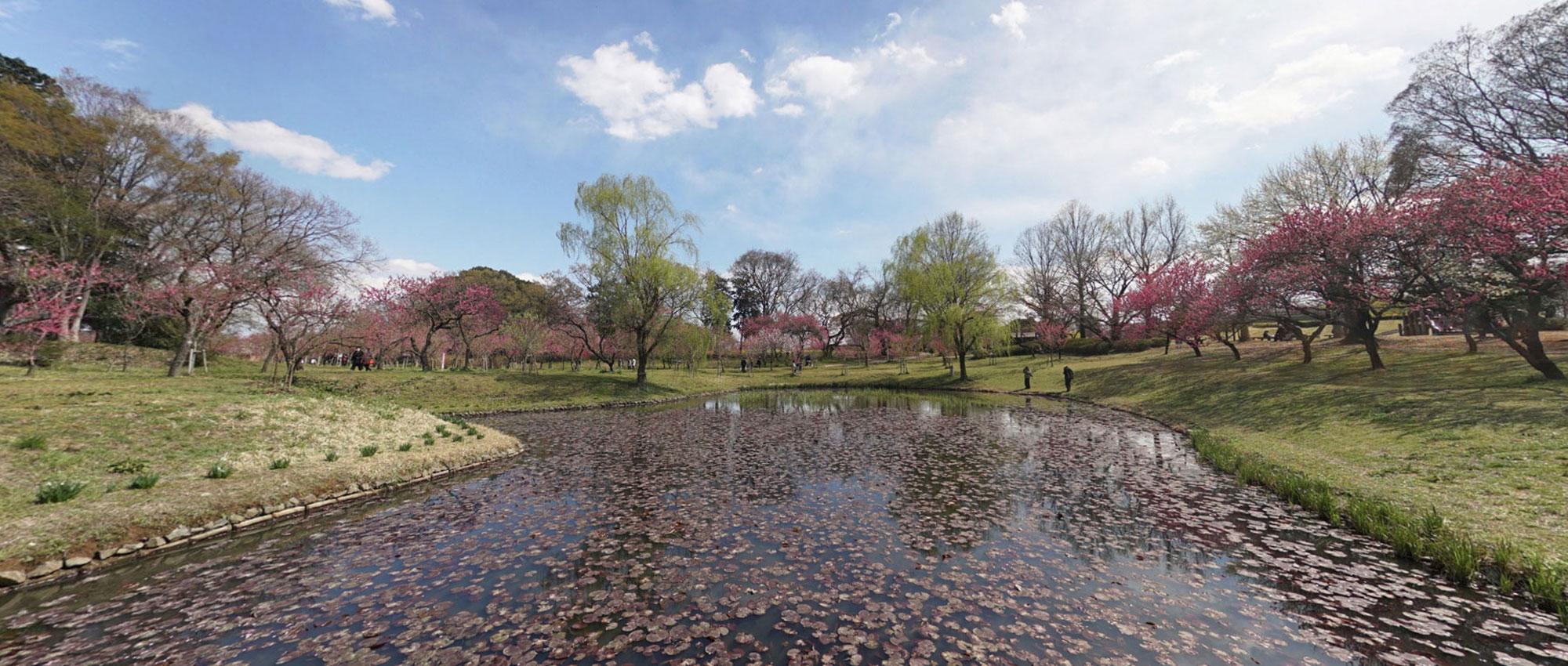 観光名所の古河公方公園の写真